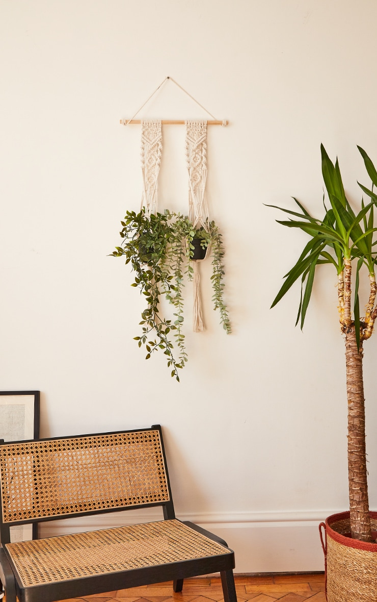Boho Woven Hanging Plant Tapestry 1