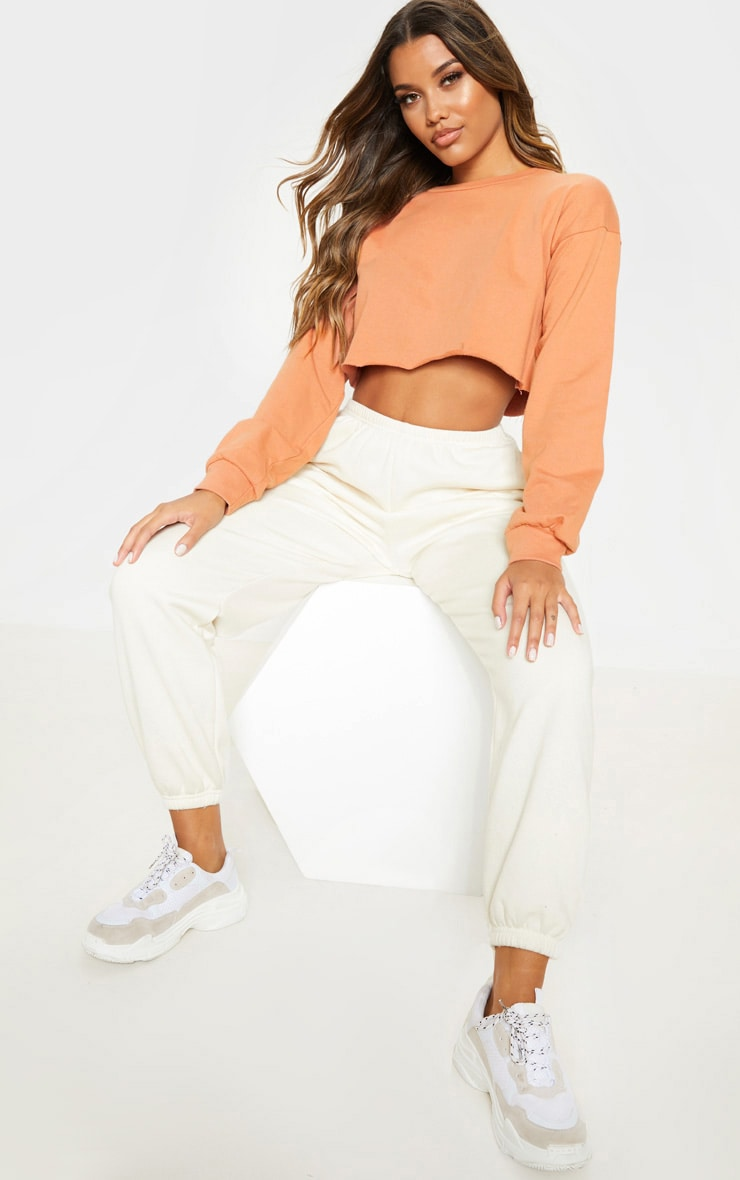 Beau Deep Peach Cut Off Crop Longsleeve Sweater 4