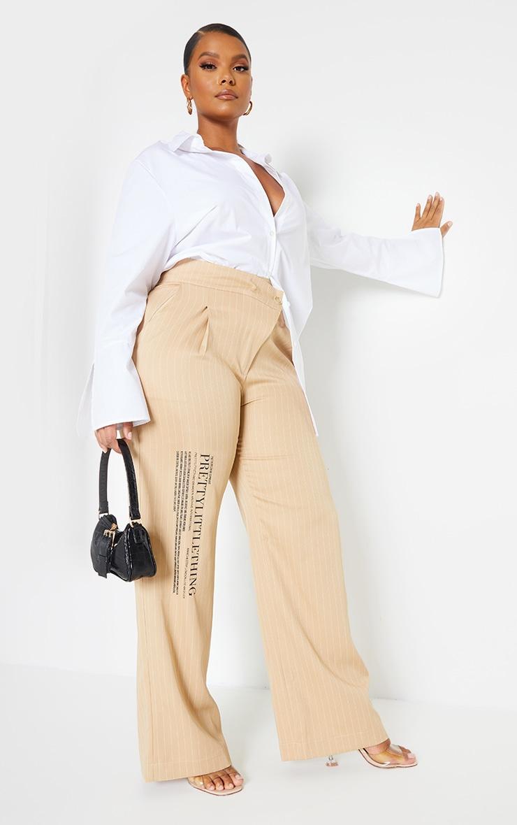 PRETTYLITTLETHING Plus Stone Pinstripe Asymetric Waist Wide Leg Pants 1