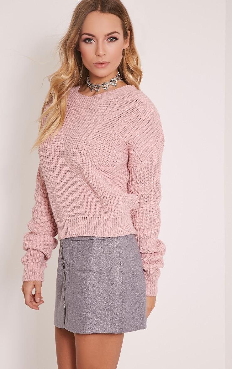 Cara Blush Knitted Crop Jumper 4