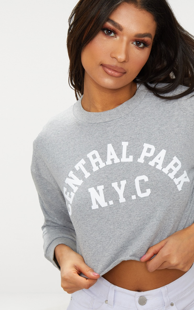 Grey Central Park Slogan Crop Sweater  4