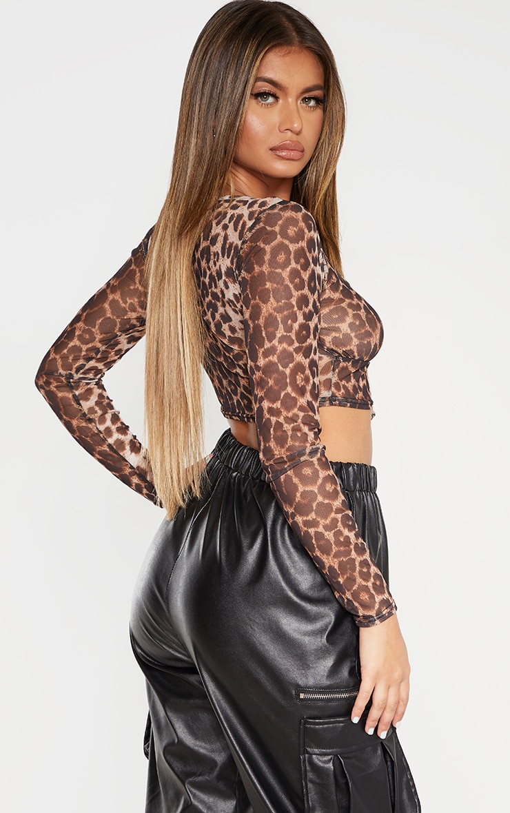 Leopard Print Mesh Tie Front Long Sleeve Crop Top 2