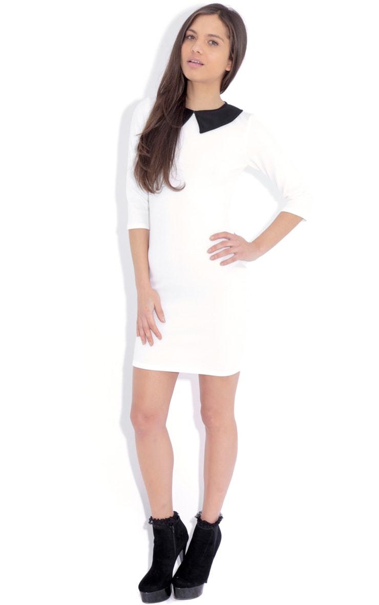 Evie White Collar Dress 3