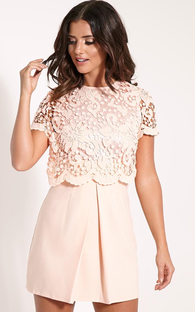 Felicia Nude Crochet Lace Skater Dress 1