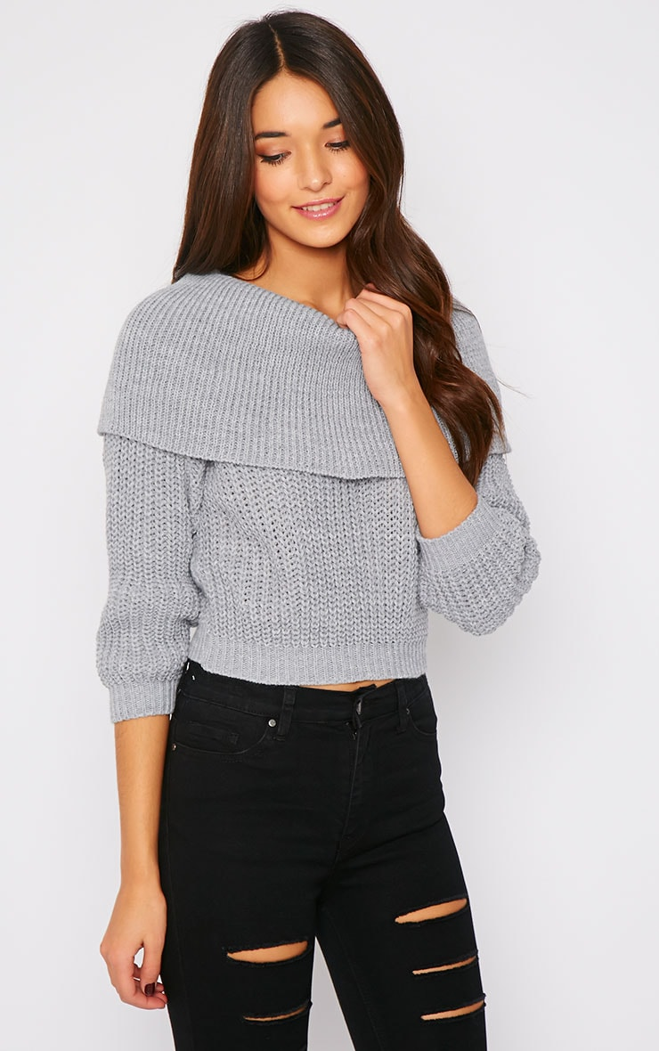 Halima Grey Roll Neck Cropped Knit Jumper 1