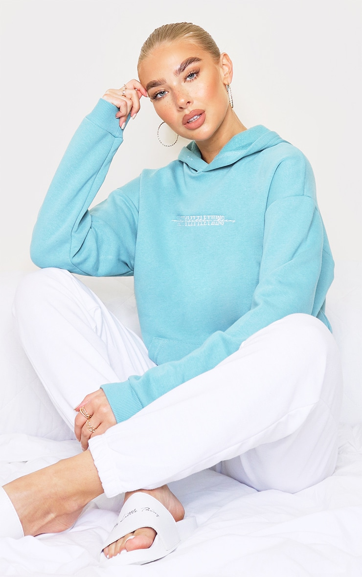 PRETTYLITTLETHING Dusty Turquoise Embroidered Hoodie 3