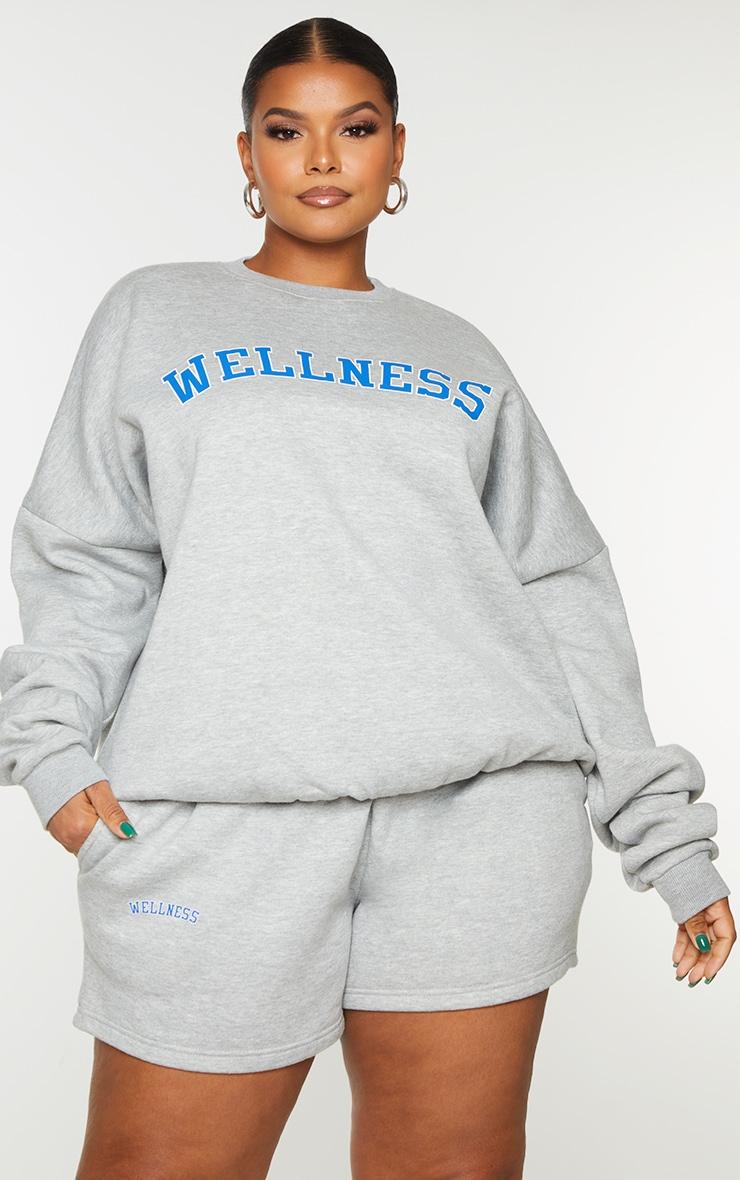 Plus Grey Wellness Sweatshirt 1