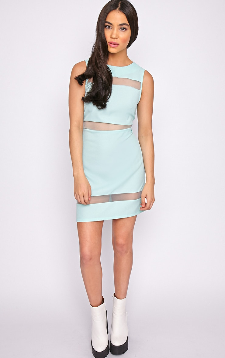 Amelie Mint Mesh Insert Dress 1