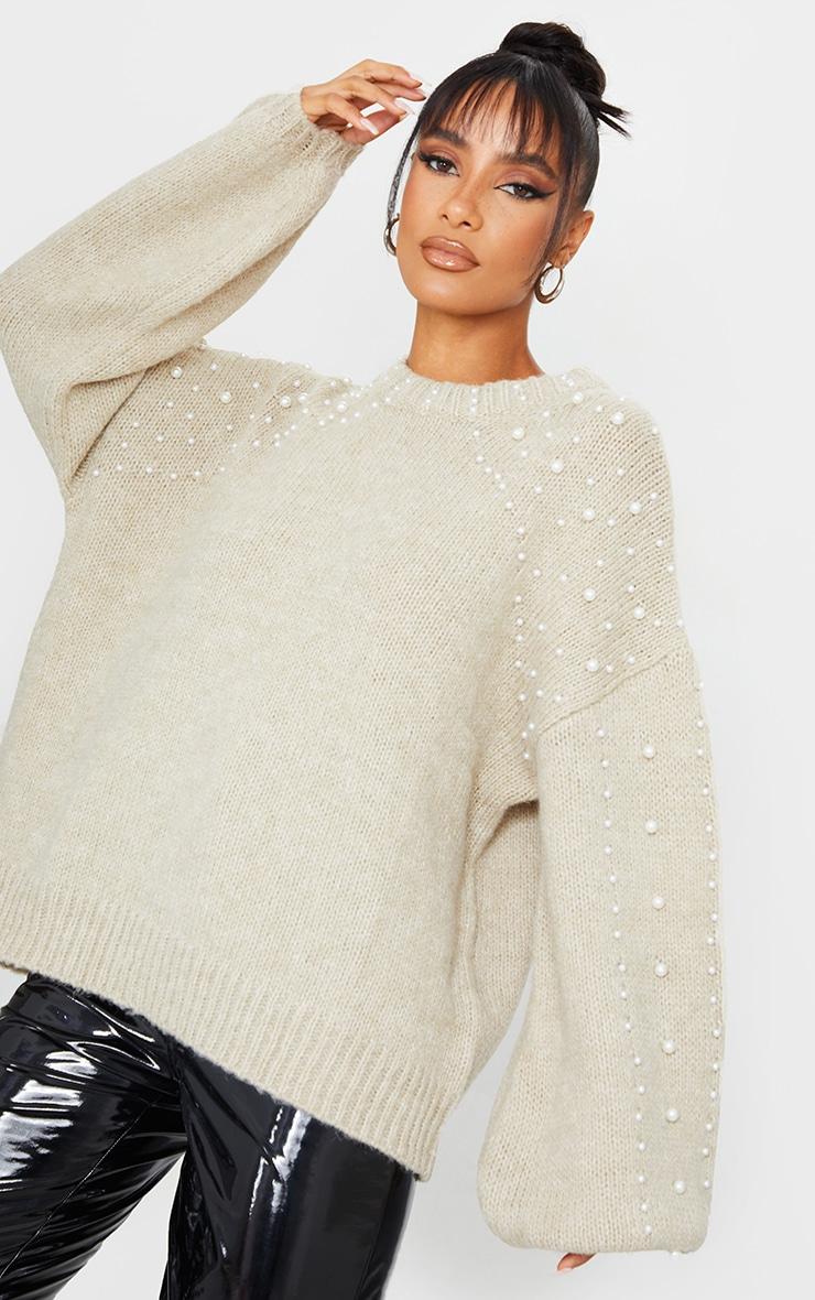 Oatmeal Embellished Sleeve Turtle Neck Sweater 1