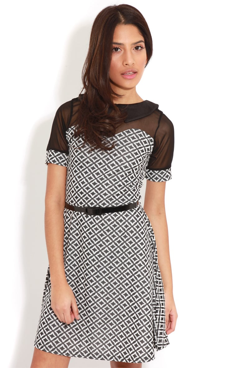 Patti Monochrome Contrast Collar Skater Dress 4