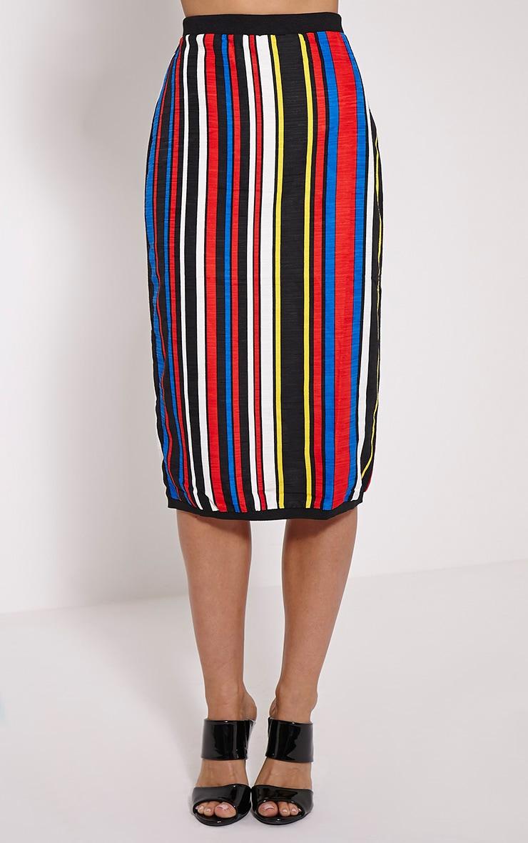 Kamie Multi Coloured Striped Midi Skirt 2