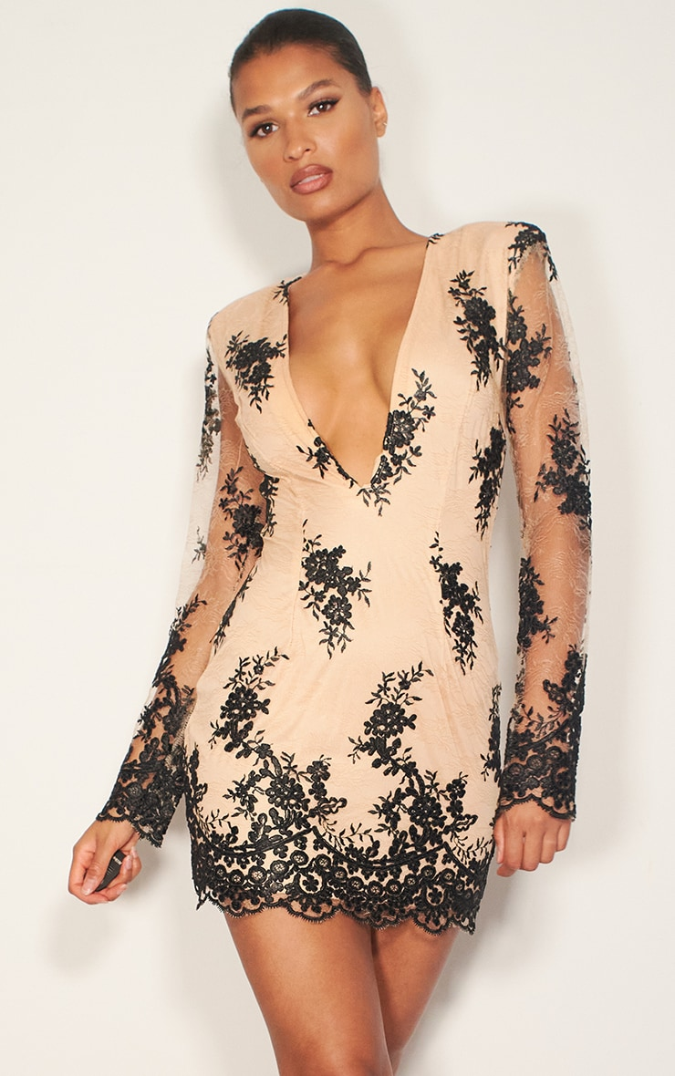 Nude Embroidered Lace Long Sleeve Plunge Bodycon Dress 3