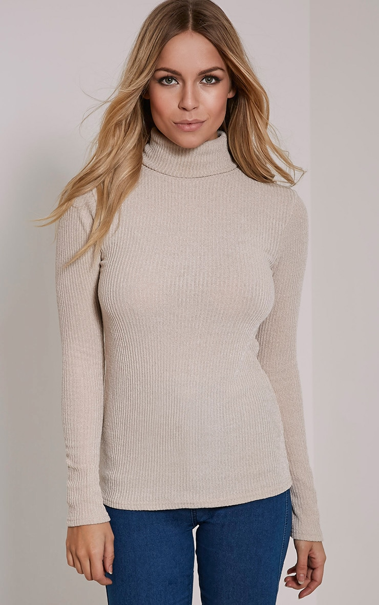 Delty Stone Knitted Rib Turtle Neck Top 1