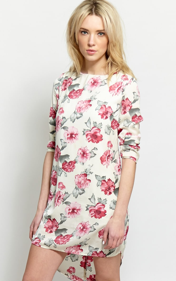 Sasha Cream & Pink Floral Shift Dress 1
