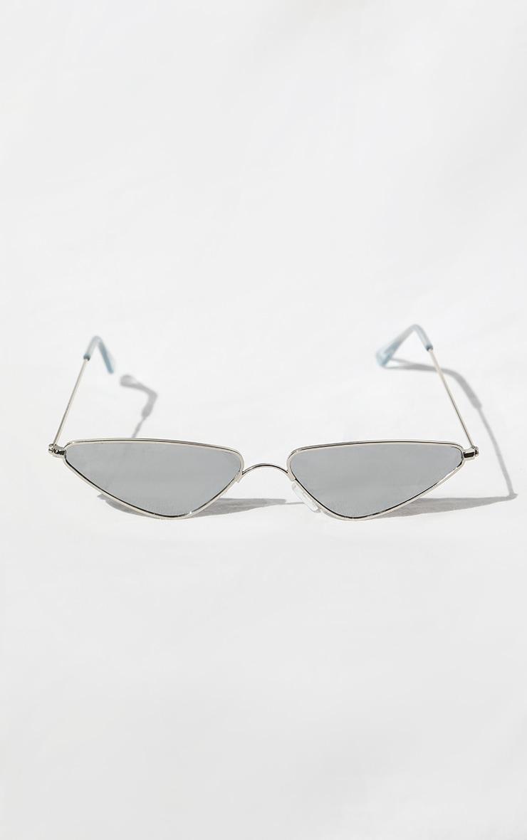 Silver Rim Cat Eye Sunglasses 1