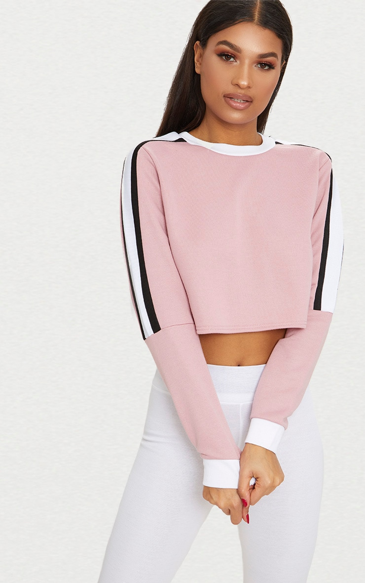Rose Triple Shoulder Stripe Crop Sweater  1