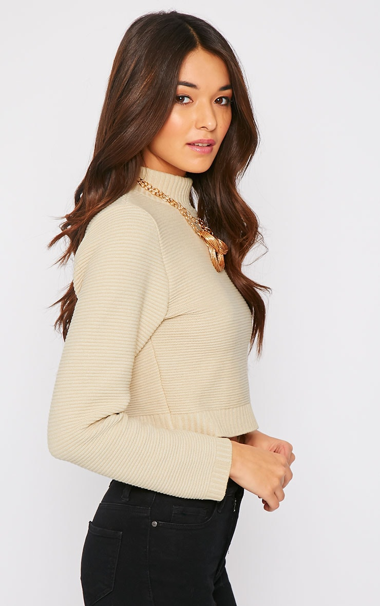 Jeanne Beige Ribbed Knit Turtle Neck Crop Jumper 4