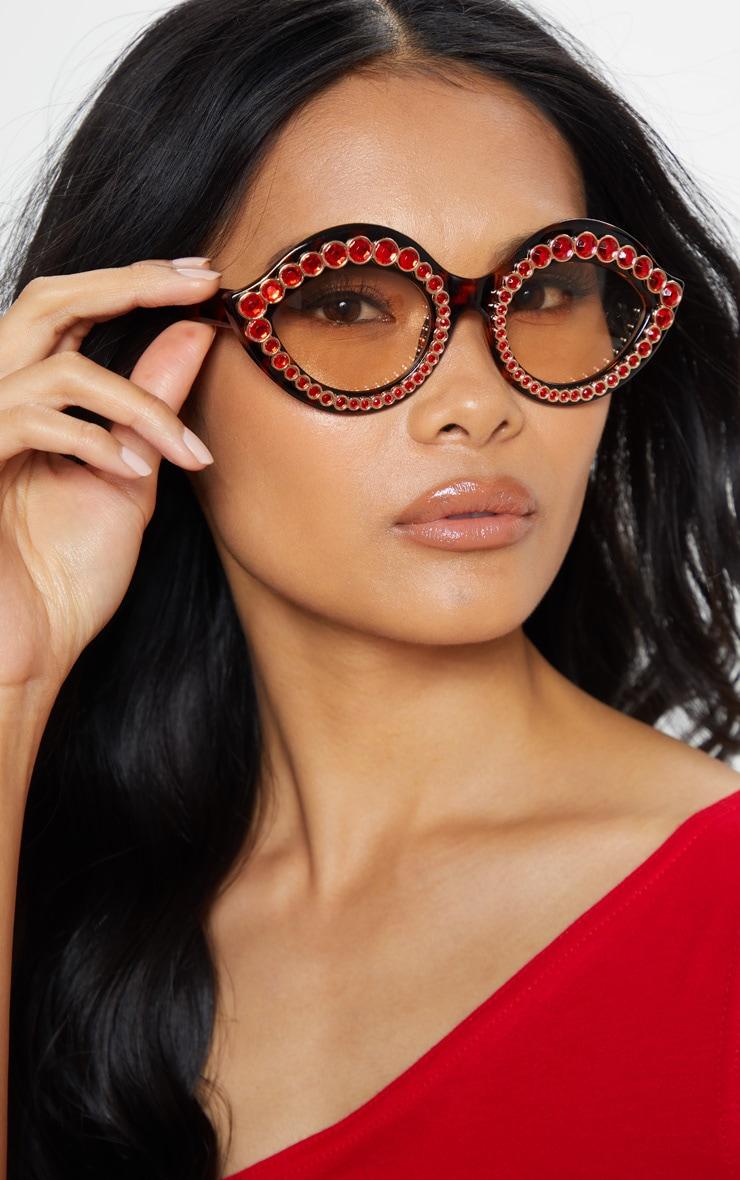 Red Gemstone Tortoiseshell Frame Retro Cat Eye Glasses 1