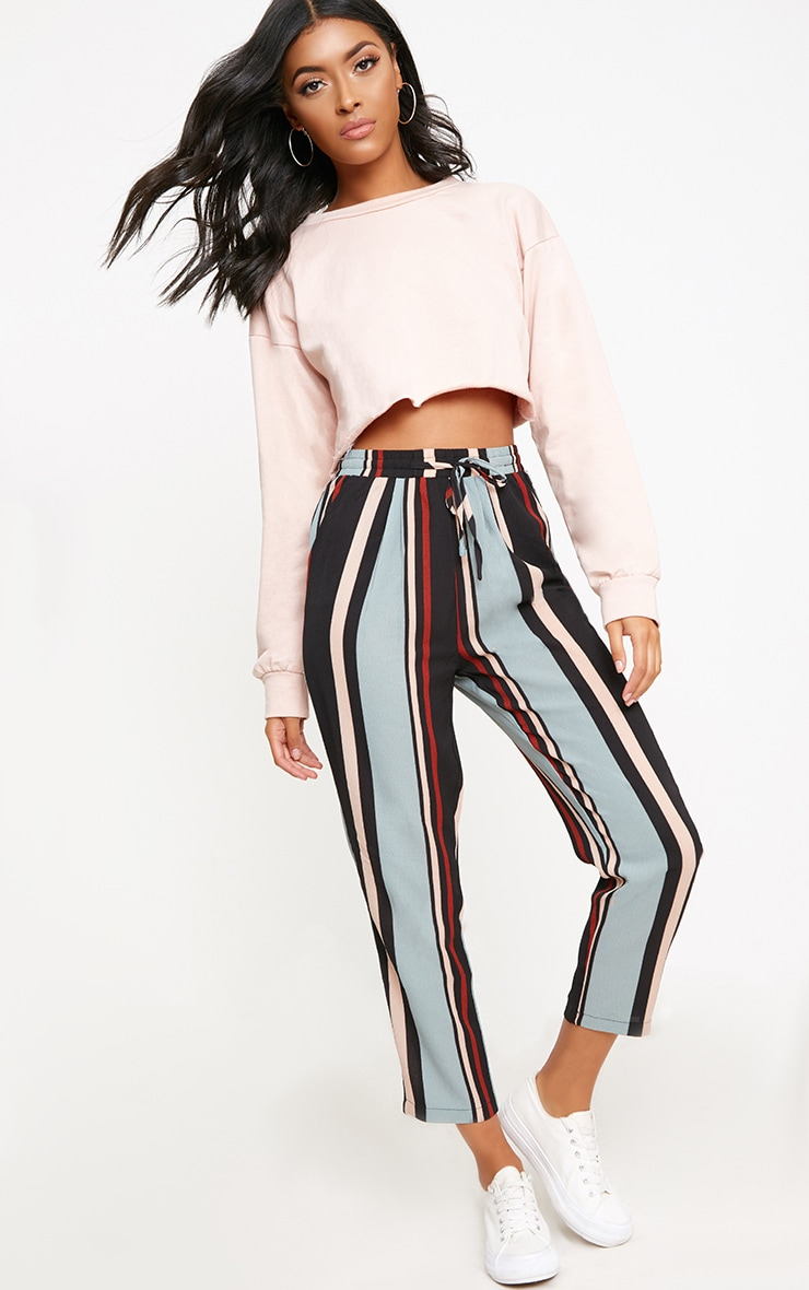 Blue Stripe Casual Trousers 1