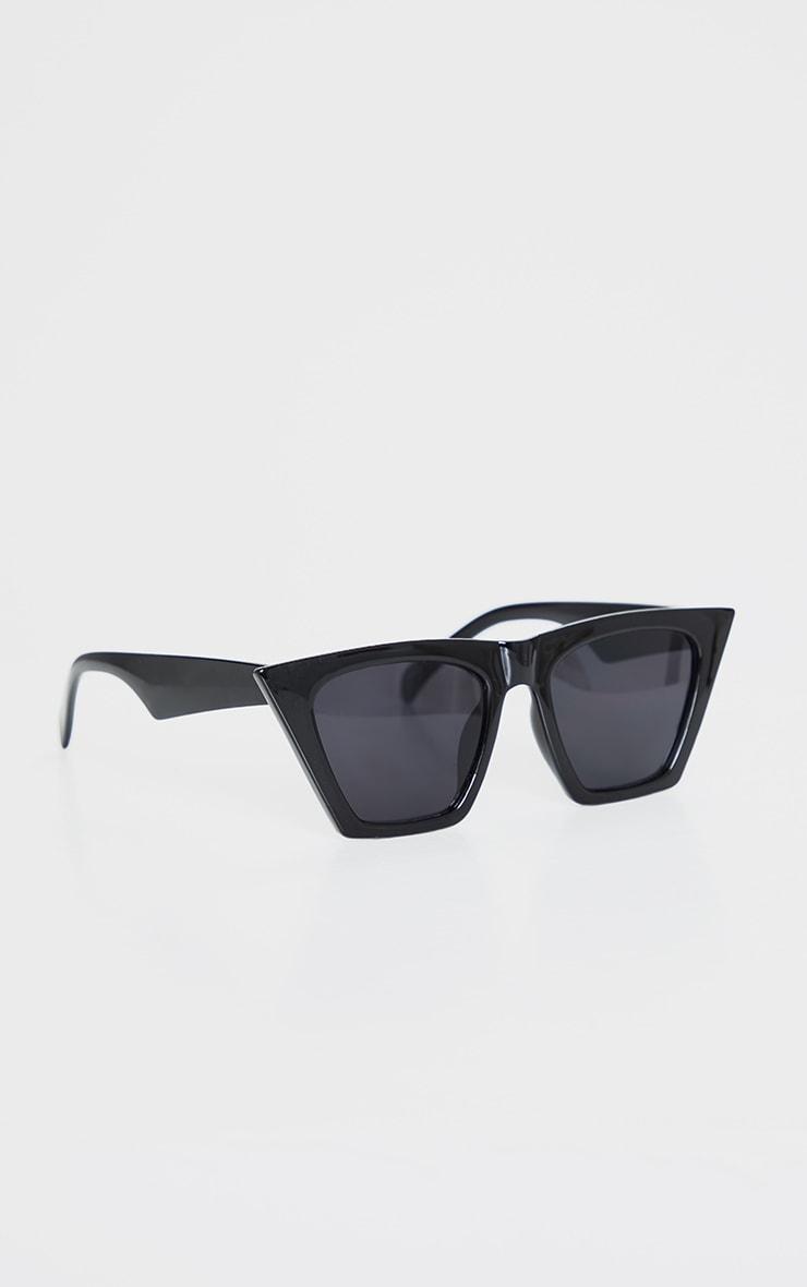 Black Triangle Sunglasses 2