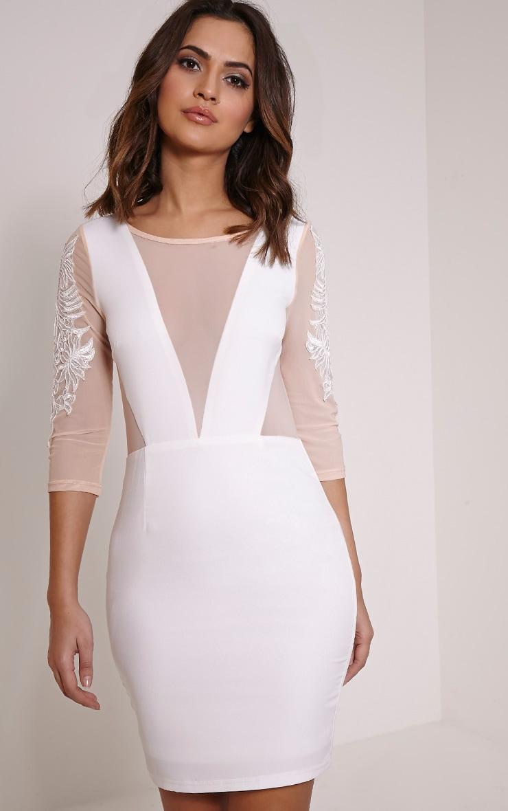 Daniella Cream Mesh Insert Mini Dress 1
