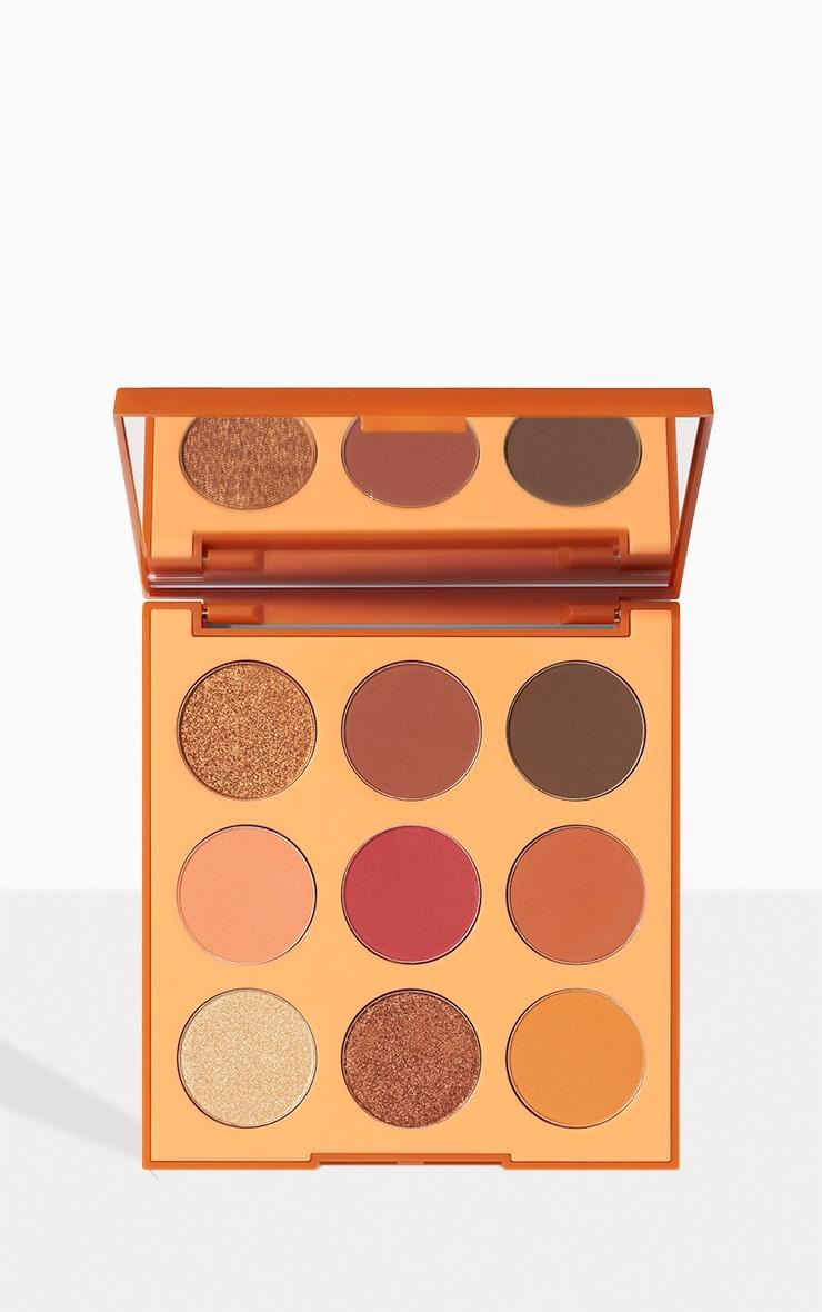 Morphe 9D Painted Desert Artistry Eyeshadow Palette 1