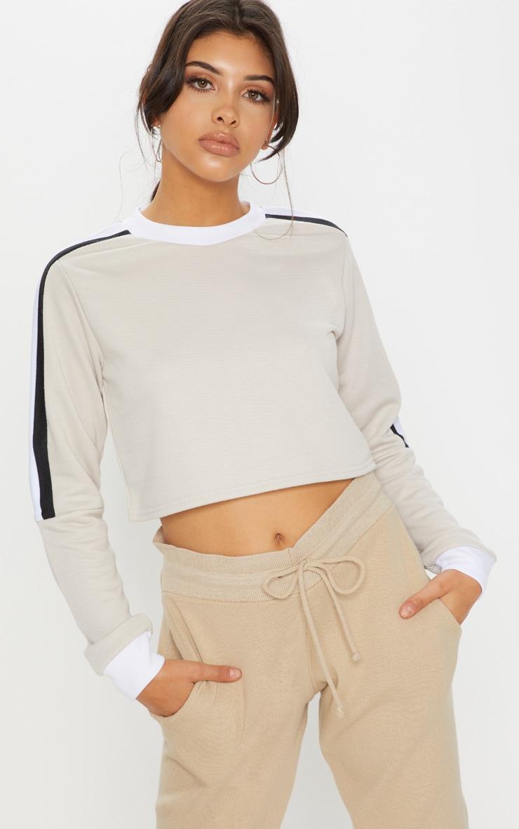 Sand Triple Shoulder Stripe Crop Sweater  4