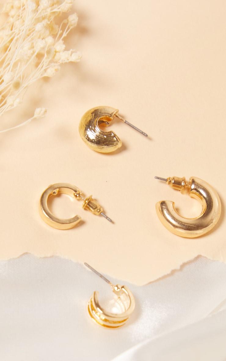 Gold 4 Assorted Hoop Pack Earrings 2