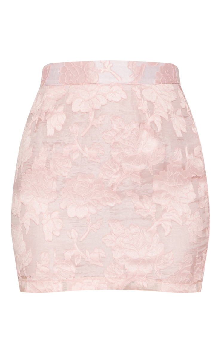 Rose Embroidered Mesh Mini Skirt 3