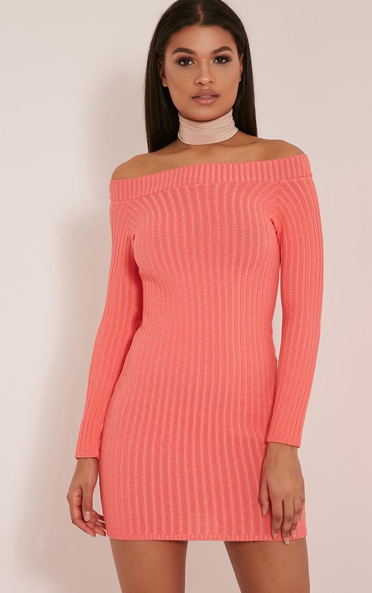 Julia Coral Bardot Mini Jumper Dress 1
