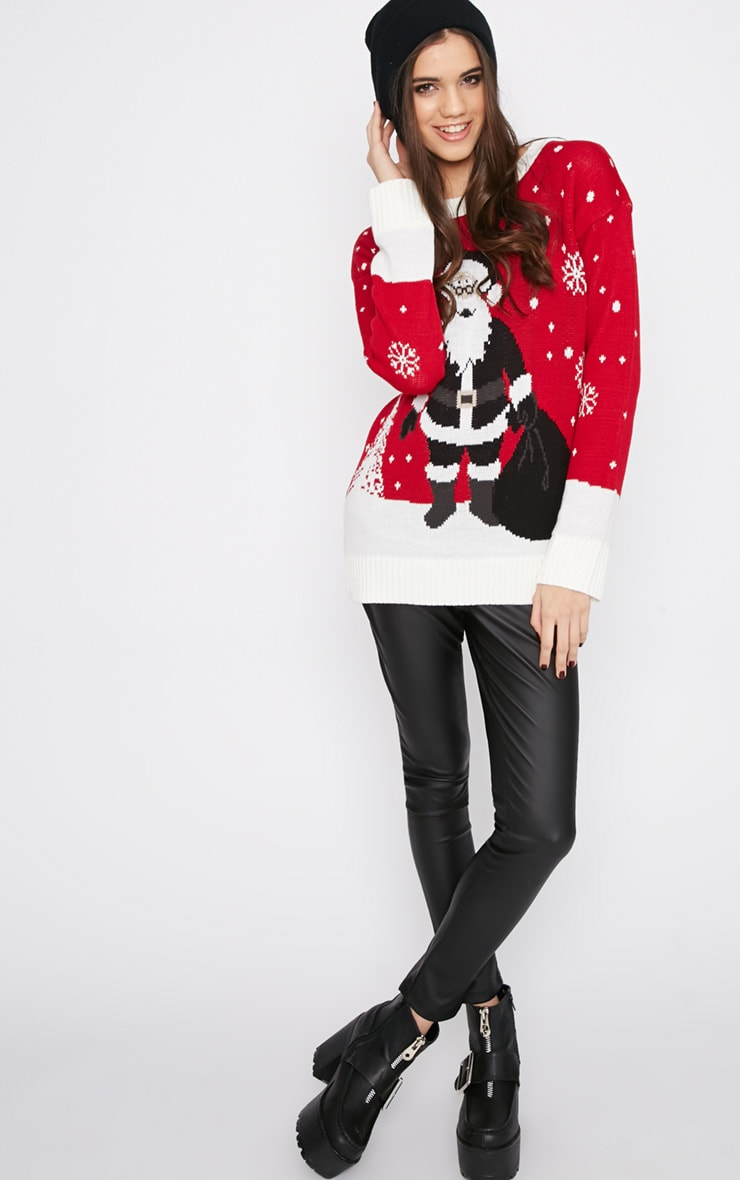 Reny Red Father Christmas Jumper 4