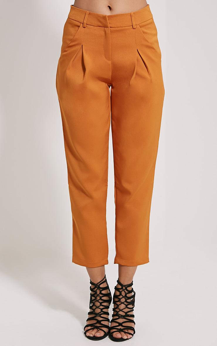 Matilda Burnt Orange Premium Tailored Trousers 2