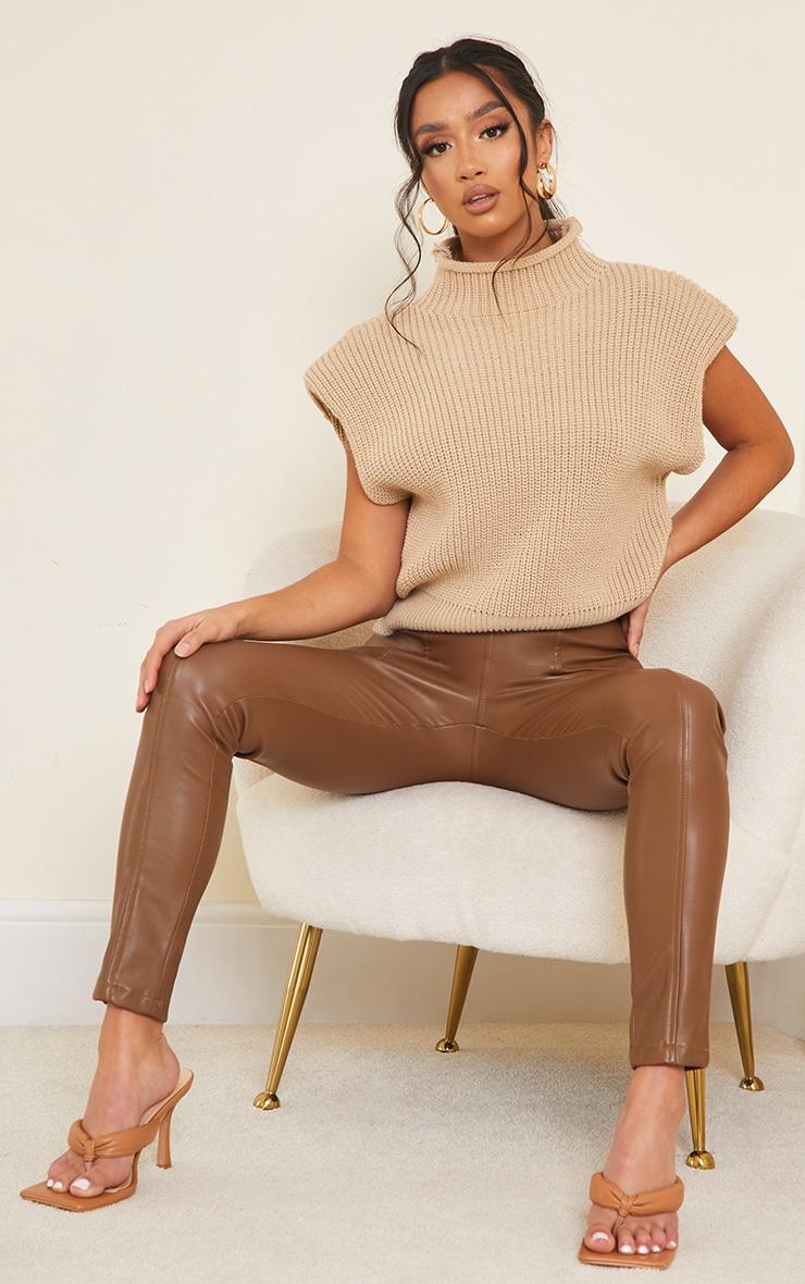 Petite Chocolate Faux Leather Stretch Leggings 1