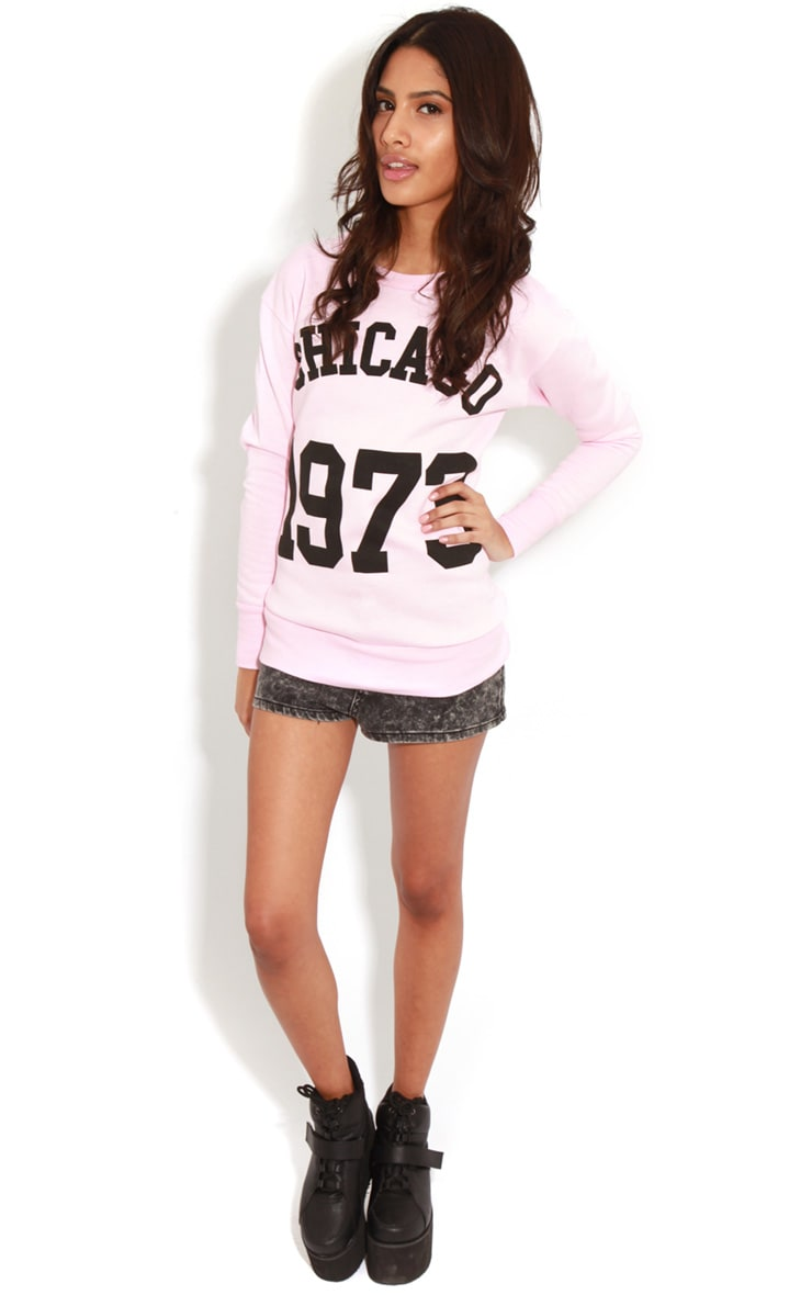 Riley Pink Chicago 1973 Sweater 3