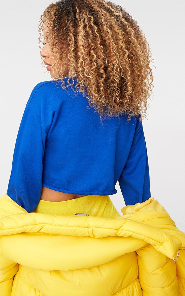 Cobalt Cut Off Crop Longsleeve Sweater 2