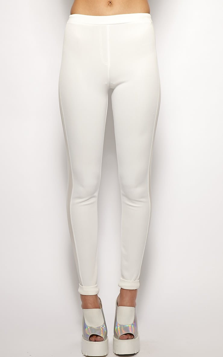 Yanoba White Premium Mesh Panel Legging  3