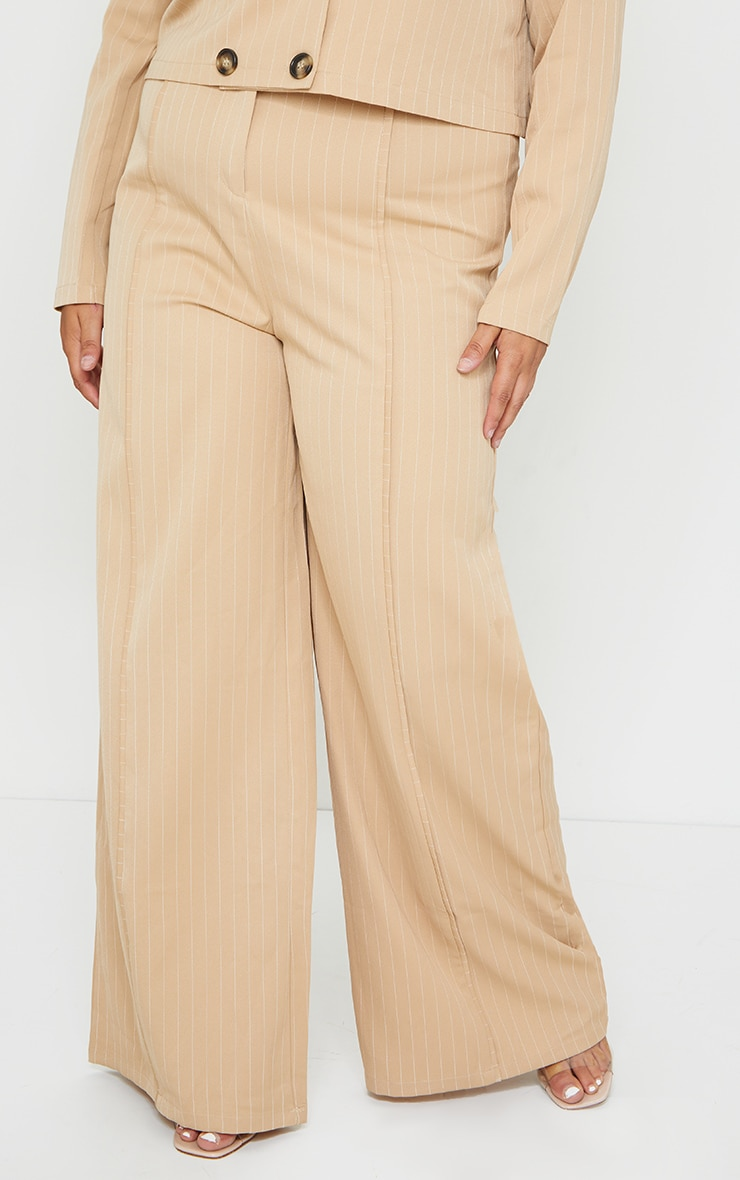 Plus Stone Striped Suit Pants 2