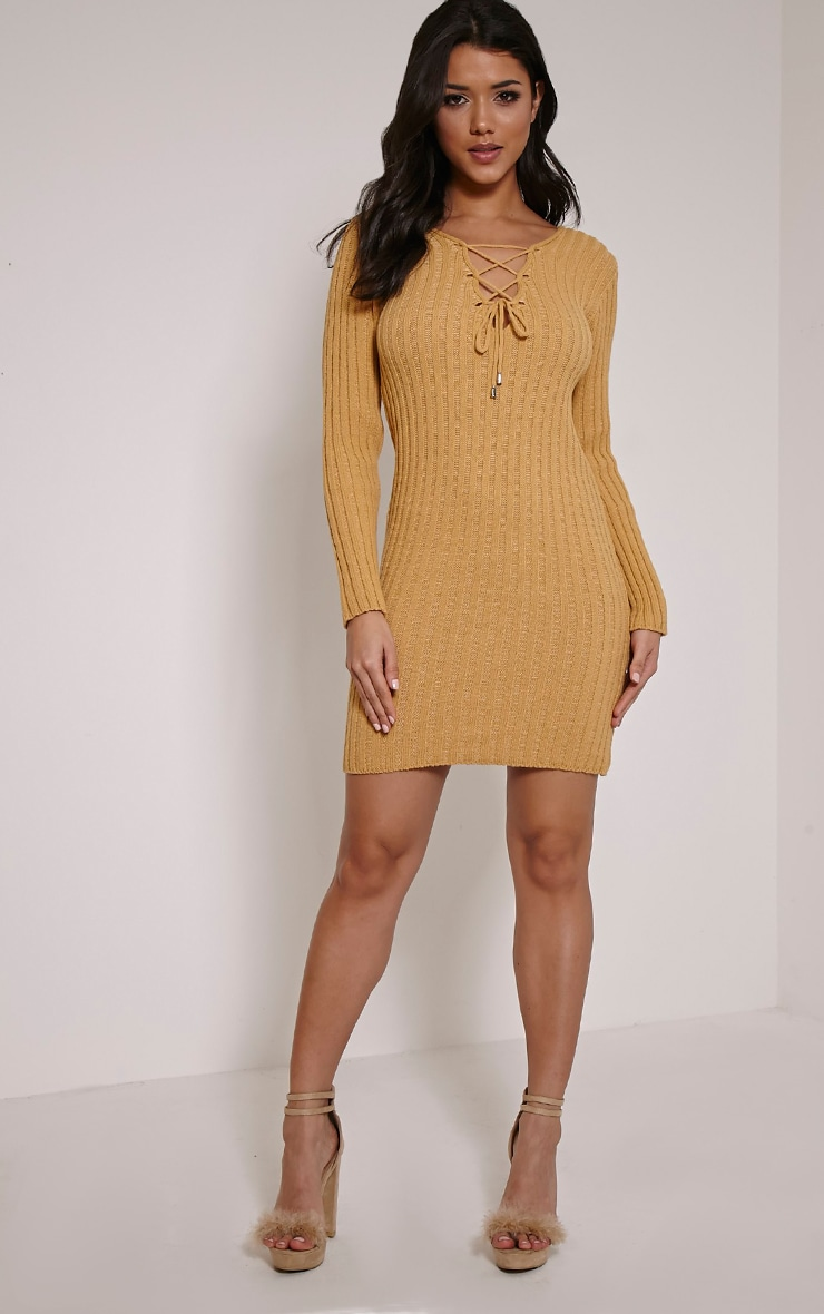 Rondy Camel Lace Up V Mini Dress 3