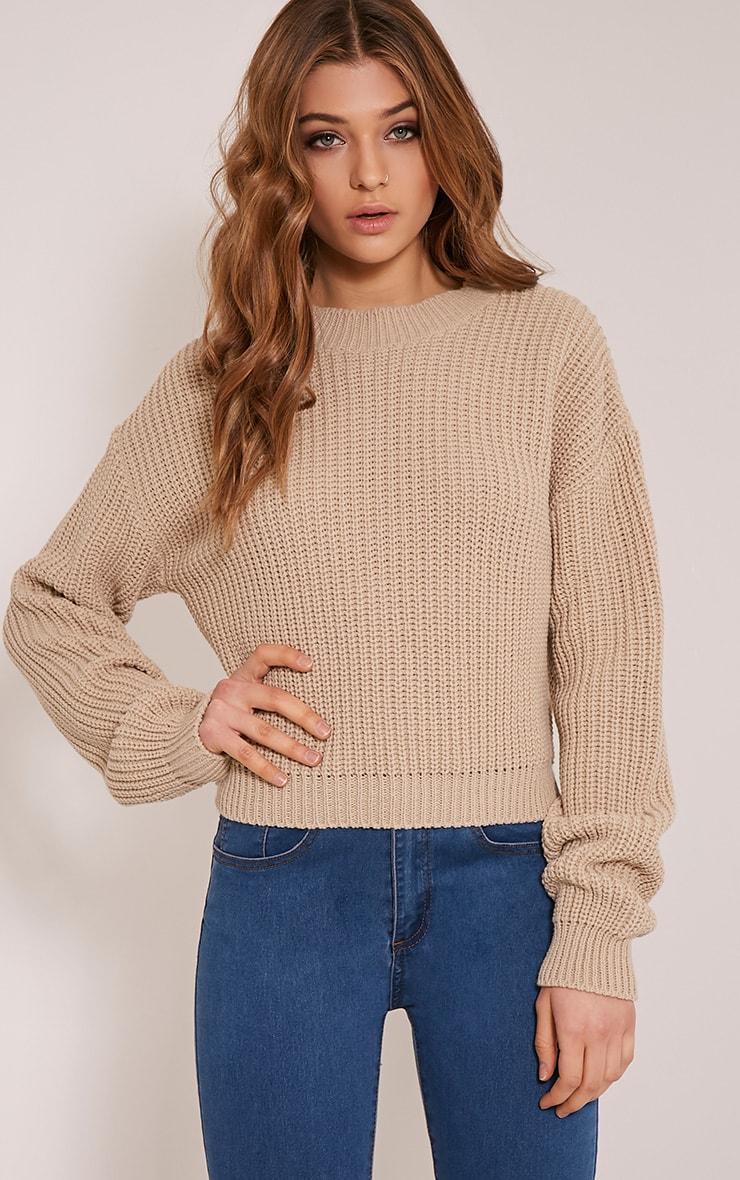 Cara Stone Knitted Crop Jumper 1