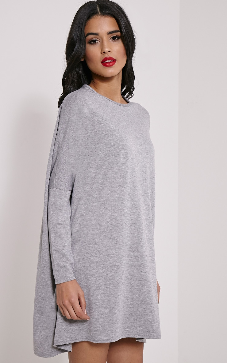 Basic Grey Marl Long Sleeve Jersey Dress 4