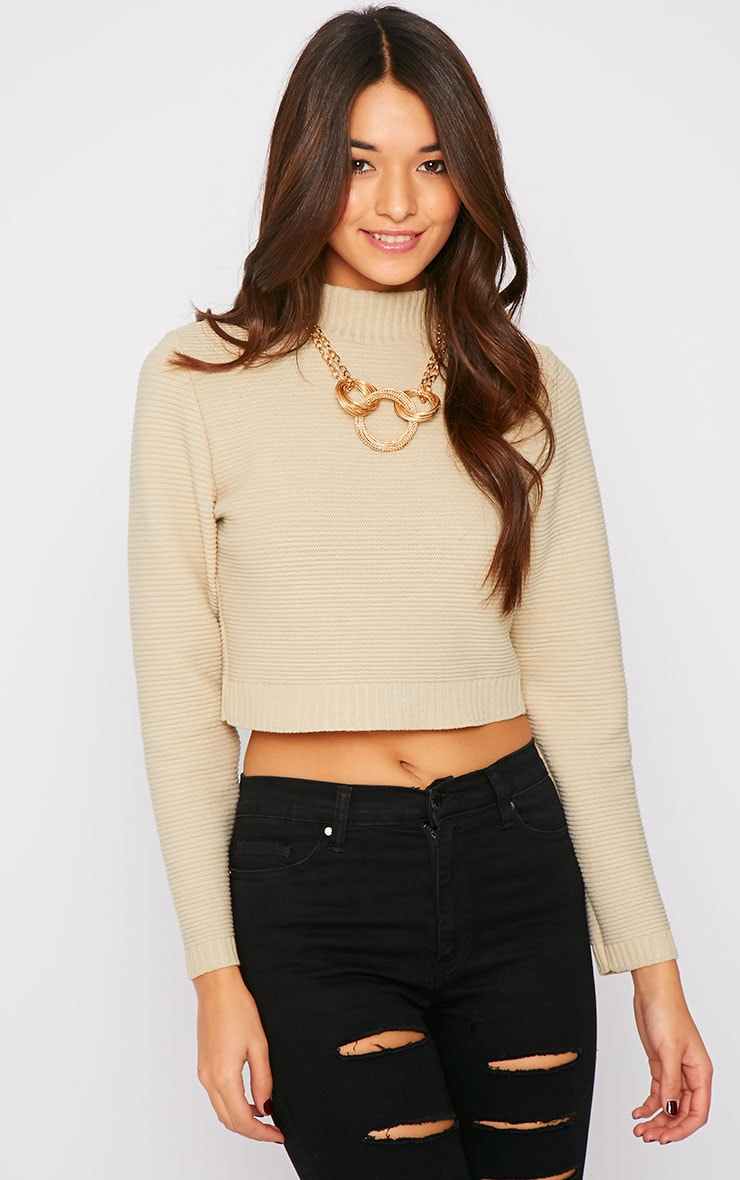Jeanne Beige Ribbed Knit Turtle Neck Crop Jumper 1