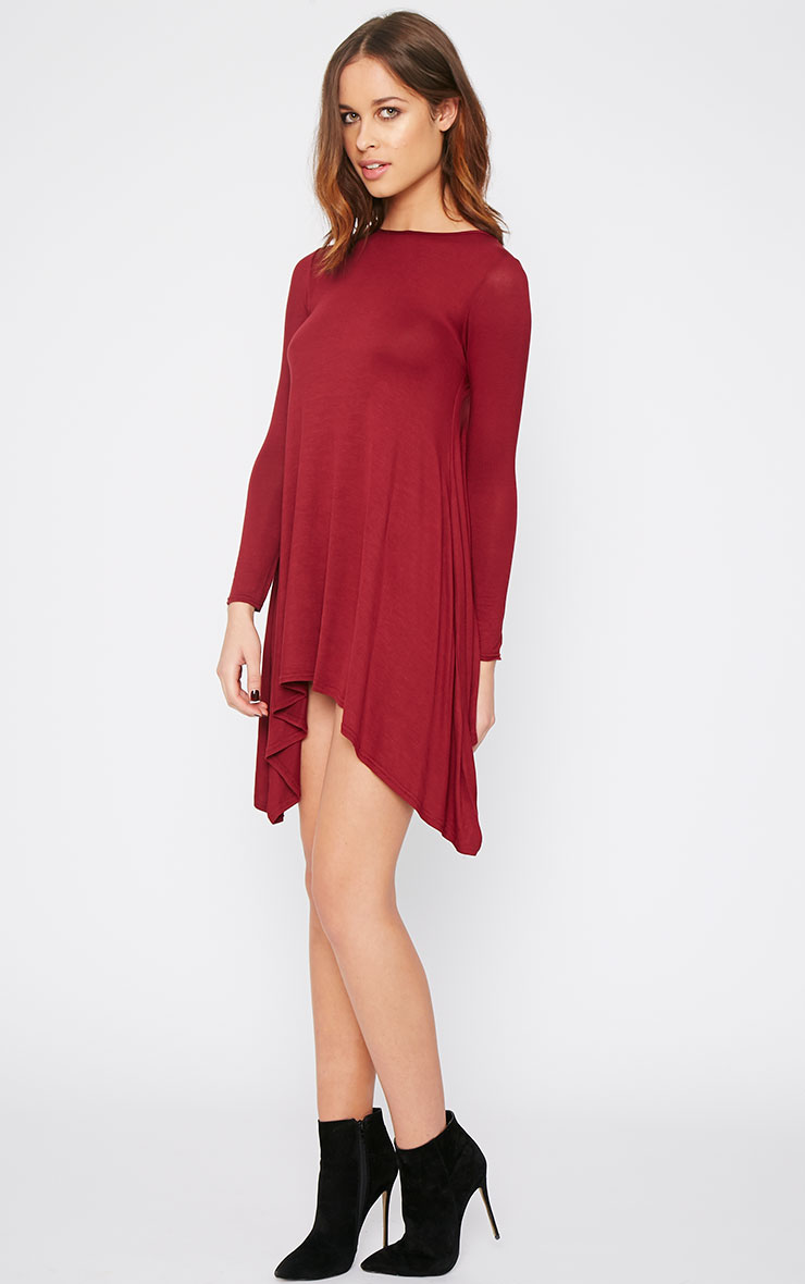 Basic Burgundy Swing Dress 4