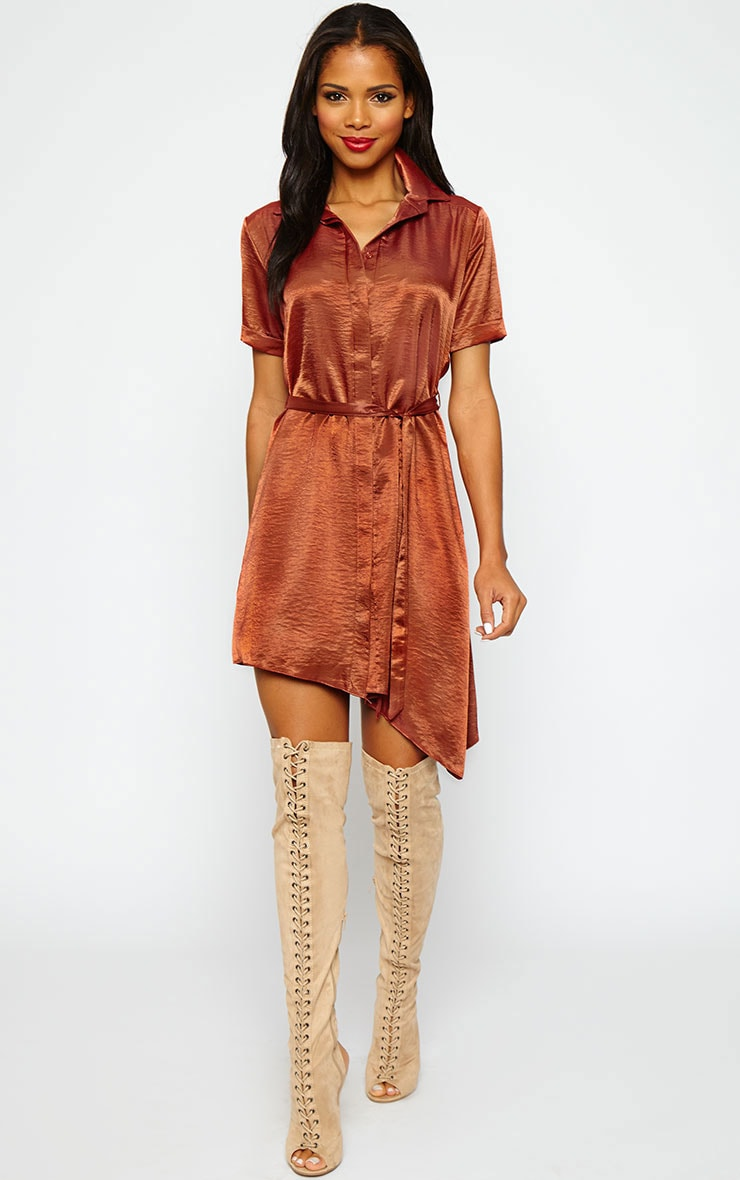 Leigha Rust Silky Shirt Dress 1