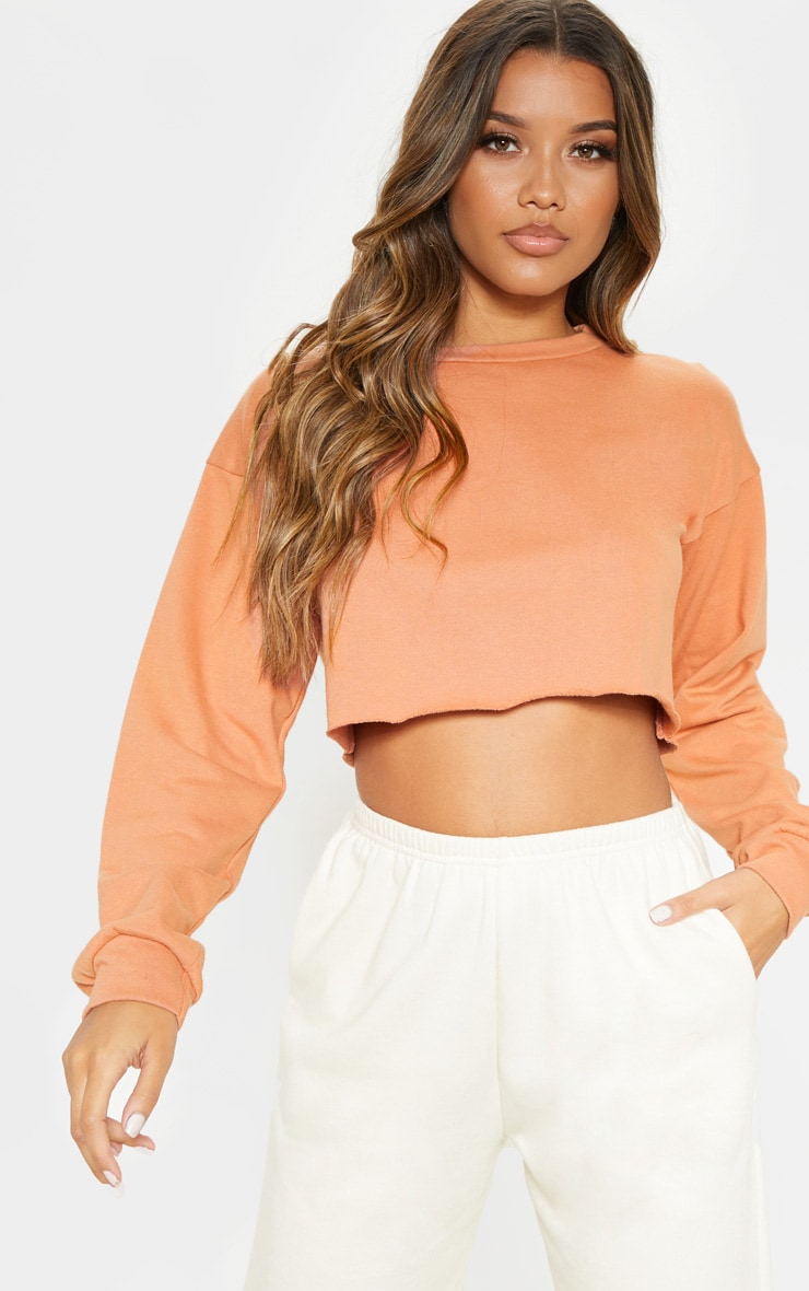 Beau Deep Peach Cut Off Crop Longsleeve Sweater 1