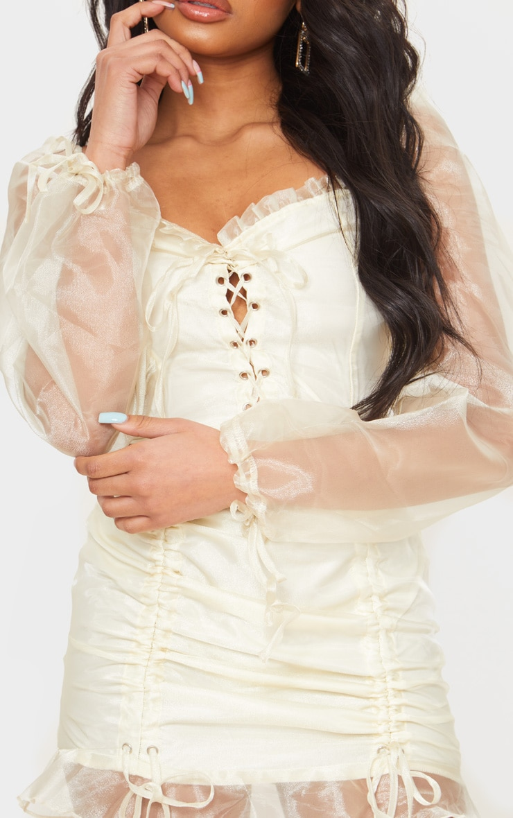 Petite Champagne Lace Up Puff Sleeve Dress 4