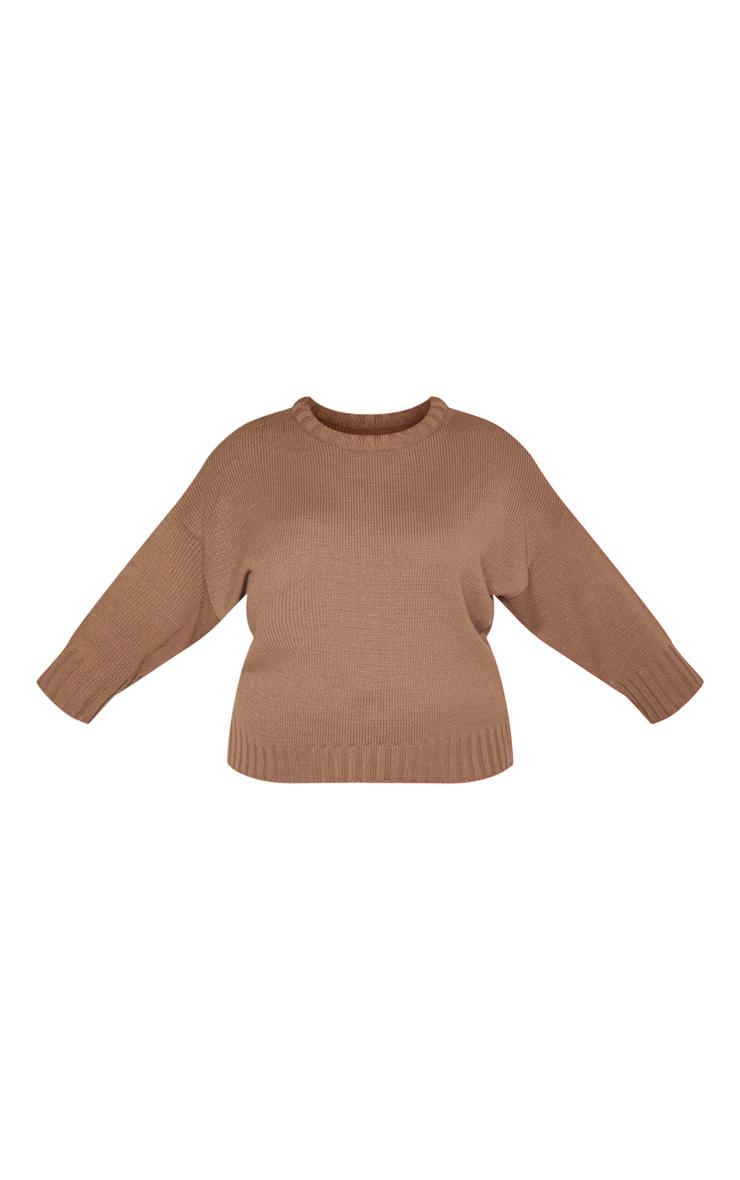 Plus Camel Batwing Sweater 3