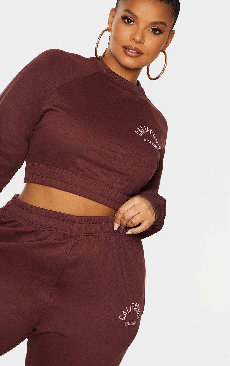Plus Chocolate Brown California Print Sweatshirt 4