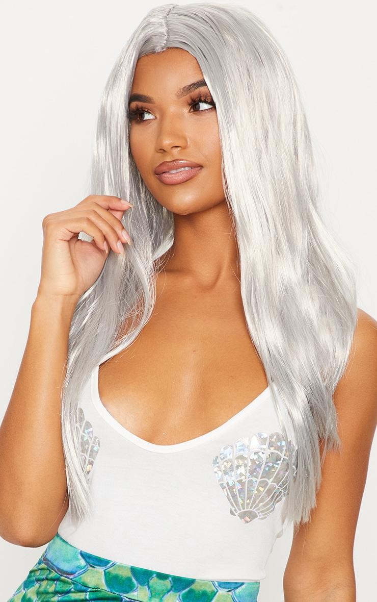 Grey Long Wig 1