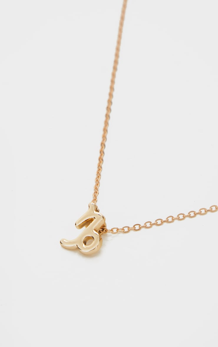 Gold Capricorn Star Sign Necklace 4