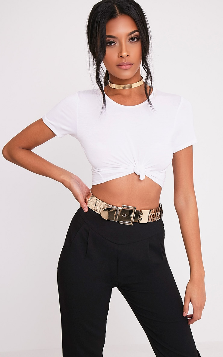 Floe Gold Multi Disc Detail Belt 1
